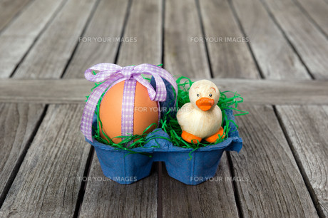 egg with a small duck in an egg carton / nestの素材 [FYI00730580]