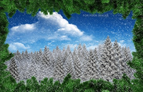 environmentの写真素材 [FYI00734958]