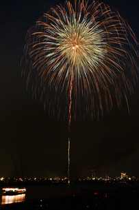 江戸川花火大会の写真素材 [FYI00735828]