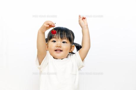 サクランボを食べる幼い女の子の写真素材 [FYI00736164]