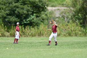 少年野球の練習の写真素材 [FYI00736555]