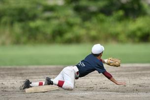 少年野球の練習の写真素材 [FYI00736558]