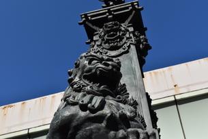 日本橋の獅子像と青空の写真素材 [FYI00736852]