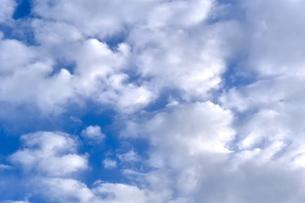 青空に映えるたくさんの白い雲の写真素材 [FYI00736855]