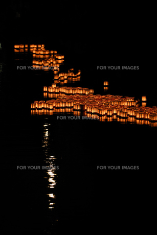 灯篭流しの写真素材 [FYI00737375]