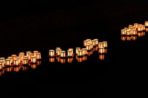 灯篭流しの写真素材 [FYI00737376]