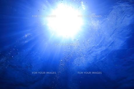 水中から見上げた太陽光とバブルの写真素材 [FYI00737956]