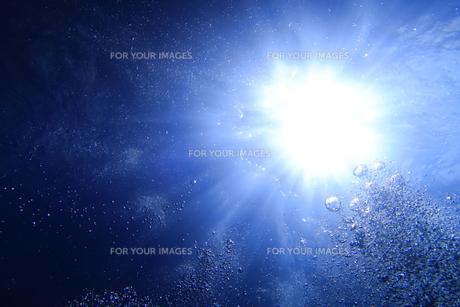 水中から見上げた太陽光とバブルの写真素材 [FYI00737957]