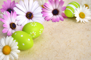 flowers and easter eggs decorate nature paperの写真素材 [FYI00738357]