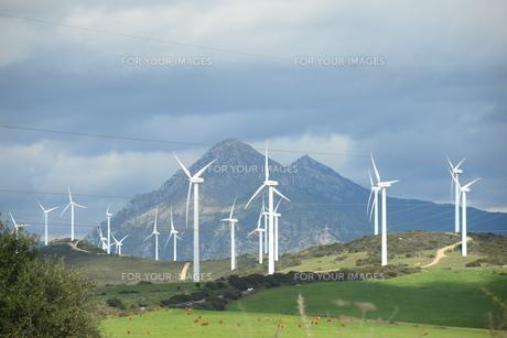 wind turbines in spain,wind energy,wind turbine,wind generator,energyの写真素材 [FYI00738574]
