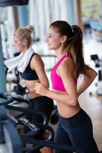 fitness_funsportの写真素材 [FYI00738707]