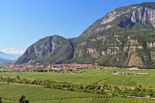Mezzolombardo and Adige valleyの写真素材 [FYI00739399]