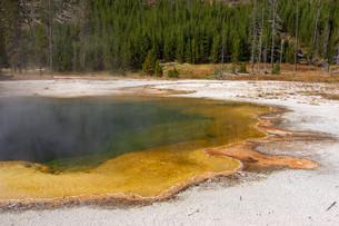 yellowstone national park,usaの写真素材 [FYI00739782]
