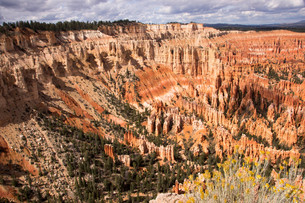bryce canyon,utah,usaの素材 [FYI00739787]