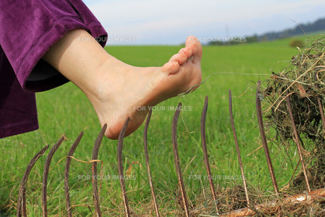 accident risk when gardening. risk of injury in agricultural workの写真素材 [FYI00740618]