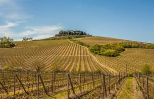 Tuscany Chianti Countrysideの素材 [FYI00741381]
