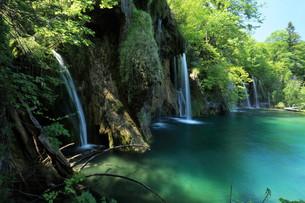 the national park plitvice in croatiaの写真素材 [FYI00741718]