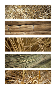 Texture and backgroundsの写真素材 [FYI00741927]