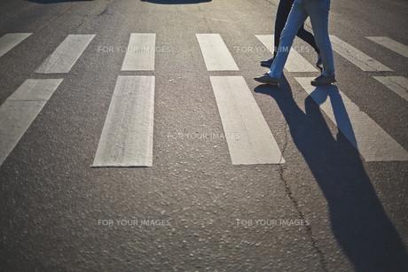 Crossing roadの素材 [FYI00741993]