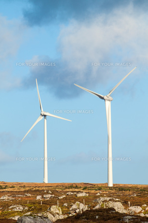 Wind Turbinesの写真素材 [FYI00742550]
