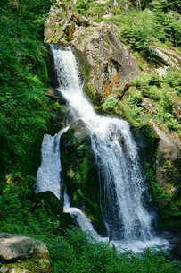the waterfall in triberg in the black forest - 20の写真素材 [FYI00742898]