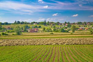 Village of Majurec in green landscapeの写真素材 [FYI00743173]