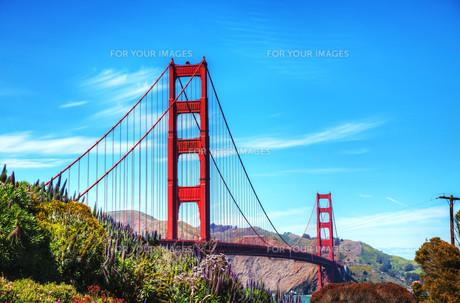 Famous Golden Gate bridge in San Franciscoの写真素材 [FYI00743538]