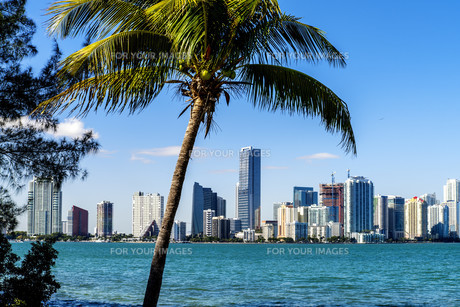 Miami Downtown skylineの写真素材 [FYI00743916]