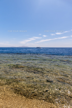 Panorama of the beach at reef, Sharm el Sheikhの写真素材 [FYI00743980]
