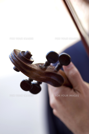 Playing violinの写真素材 [FYI00744161]