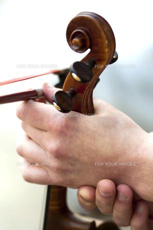 Violinの写真素材 [FYI00744183]