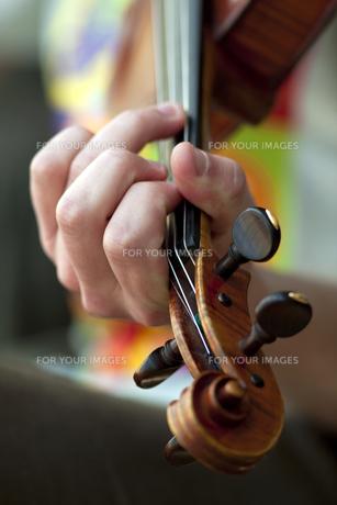 Violinの写真素材 [FYI00744202]