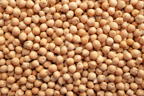 Dried chick peas backgroundの写真素材 [FYI00744248]