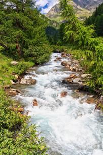 Mountain stream on summerの写真素材 [FYI00744270]