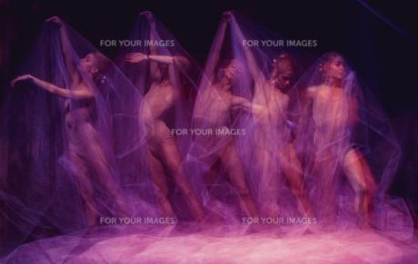 sensual and emotional dance of beautiful ballerina through the veilの写真素材 [FYI00744572]