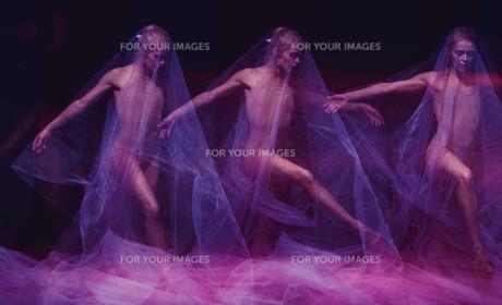 sensual and emotional dance of beautiful ballerina through the veilの写真素材 [FYI00744574]