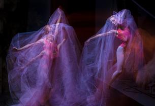sensual and emotional dance of beautiful ballerina through the veilの写真素材 [FYI00744575]