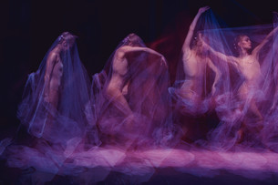 sensual and emotional dance of beautiful ballerina through the veilの写真素材 [FYI00744576]