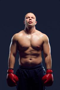 Muscular man - young caucasian boxerの写真素材 [FYI00744581]