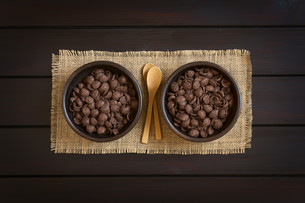 Chocolate Corn Flakes Breakfast Cerealの素材 [FYI00744773]