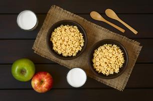 Honey Flavored Breakfast Cereal and Milkの写真素材 [FYI00744786]