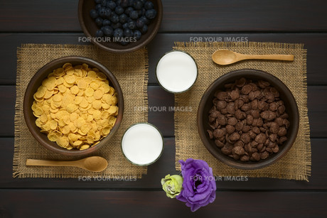 Chocolate and Simple Corn Flakes Breakfast Cerealの素材 [FYI00744788]