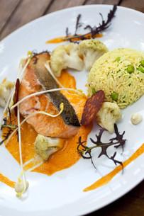 Salmon dishの写真素材 [FYI00744934]