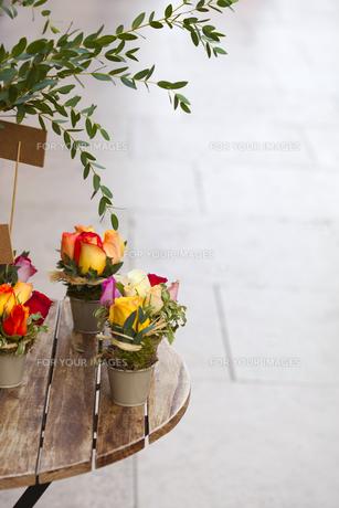 Rosesの写真素材 [FYI00745360]