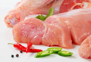 Raw turkey meatの写真素材 [FYI00745771]