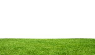 Green fieldの素材 [FYI00745958]