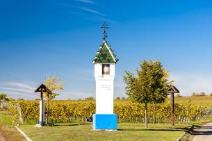 God''s torture with vineyard near Velke Bilovice, Czech Republicの写真素材 [FYI00746046]