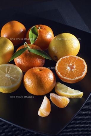 Citrus fruitsの写真素材 [FYI00747038]