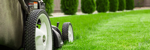 Lawn mowerの写真素材 [FYI00747210]