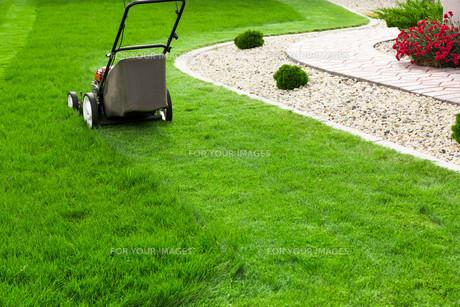 Lawn mowerの写真素材 [FYI00747218]